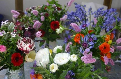 real cut flower garden01