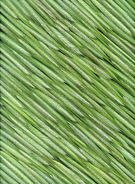 856f048c9ceaea05edc8b8623ad44119